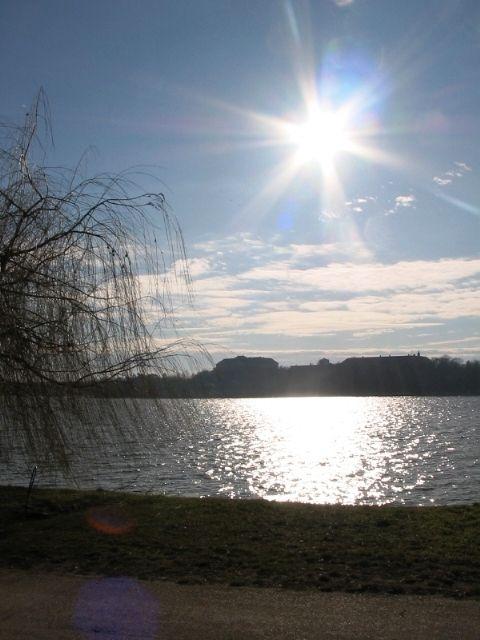 Randi százszorszép folge 10 patak